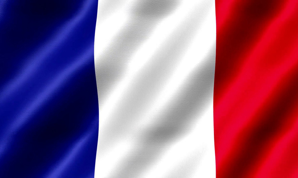 French Flag - ProSolution Management Services