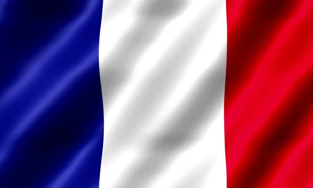 French Flag - ProSolution Management Services
